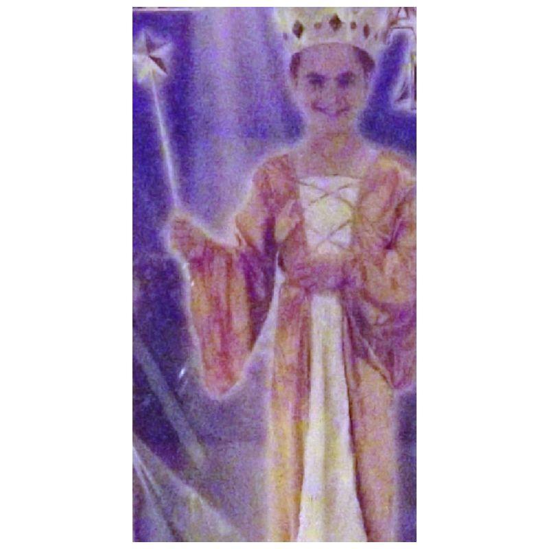 En super flot prinsesse eller dronning dragt, b�de til leg ,fastelavn eller halooven